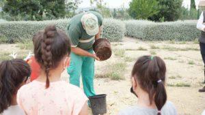 fundacion-juan-peregrin-plantacion-arbre-blanc-niños-obra-social